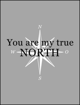 film-true-north-single