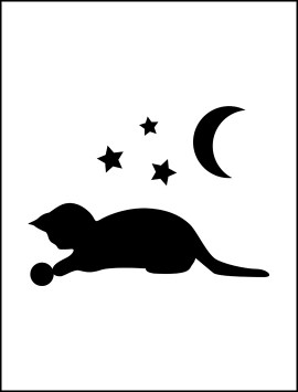 pet-cat-on-lightswitch-02-single