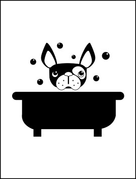 pet-dog-in-bath-single