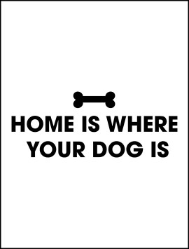 pet-home-is-where-the-dog-is-single5